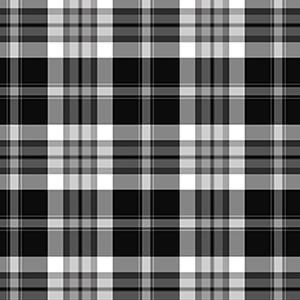 Black White Traditional Plaid David Textiles Flannel