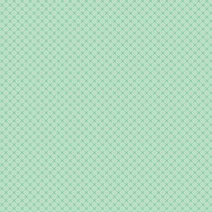 "Riley Blake Kisses Sweet Mint Flannel - 16"" Remnant"