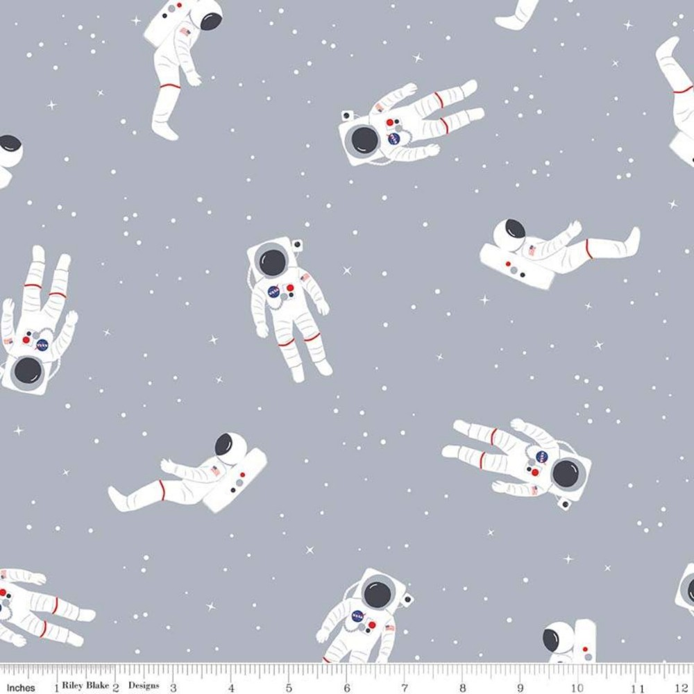 """Out of this World with NASA Astronauts Gray Flannel - 18"""" Remnant"""